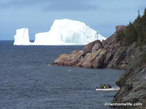 Iceberg and lobster fishing in Brigus